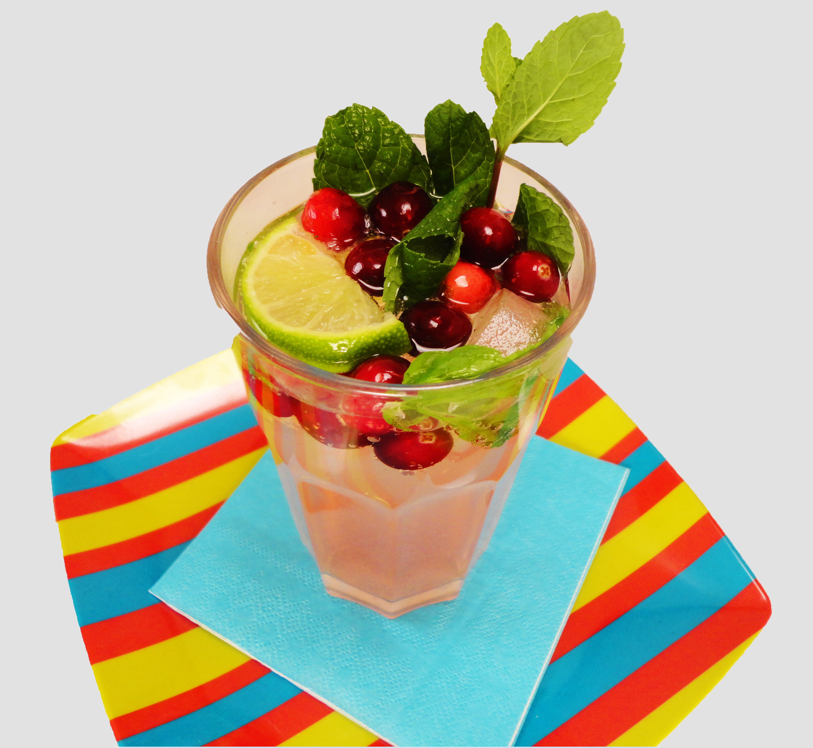 Spiced Cranberry Mojito | Culinary Adventures in the Kitchen